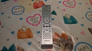 Original Philips remote control 313925870052 for DVD TV